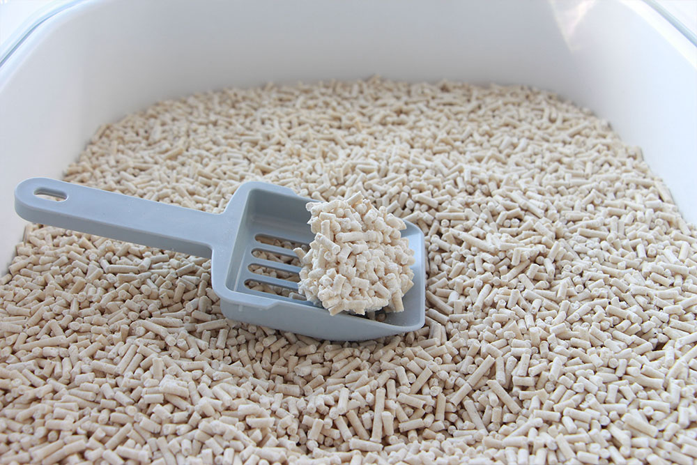 My Practical Suggestions On How To Choose Cat Litter
